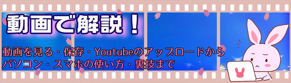 動画ファン